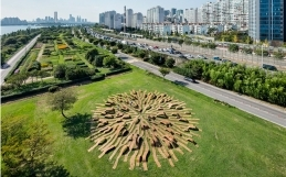 """THE """"ROOT BENCH"""" IN SEOUL"""
