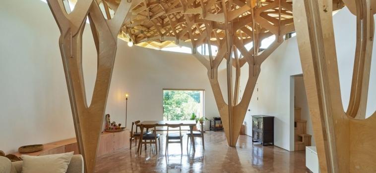 THE HOUSE OF THE THREE TREES: SOUTH KOREA